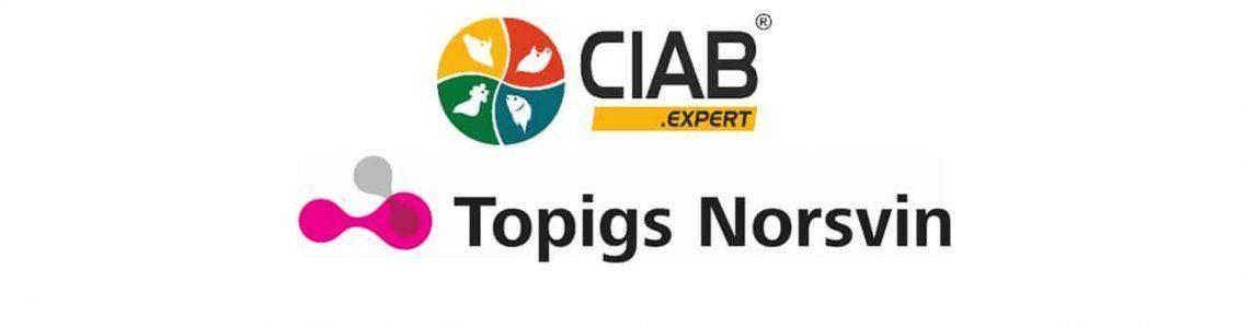 CIAB_TN